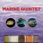 Ocean Nutrition - Marine Quintet