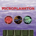 Ocean Nutrition - Microplankton